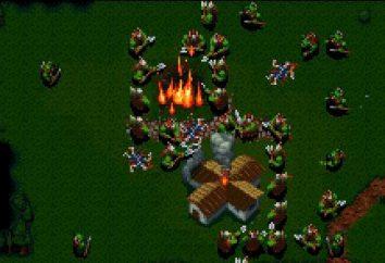 "A história de ""Warcraft"" (WarCraft). History of Warcraft heróis"