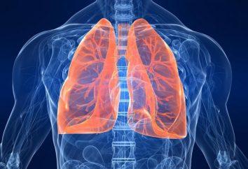 Die Atmung – das ist der Prozess des Lebens