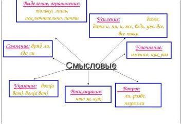 partículas Smyslovye. sus características