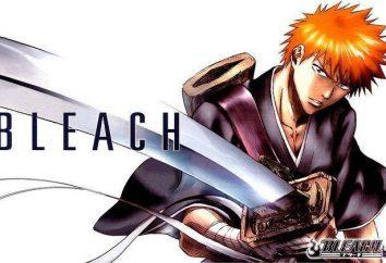 """Anime """"Bleach"""": la description de la parcelle. Post-it « Bleach »"""