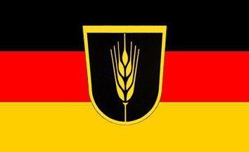 Chi è il tedeschi del Volga: Storia di coloni tedeschi