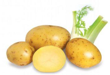jus de pommes de terre pour l'estomac: l'application et commentaires