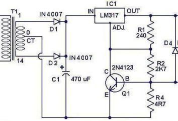 Ładowarki impulsowe z własnymi rękami: schematy, instrukcje, recenzje