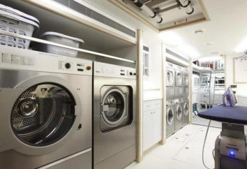 Jak sprawdzić silnik na naprawę pralki?
