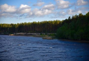 Atracciones región de Leningrado: Mina-Myaglovo