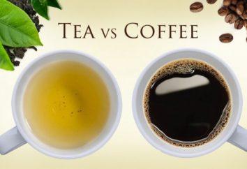 Por que é melhor para beber chá em vez de café: 10 razões