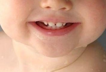 Porządek i schemat ząbkowanie dziecka