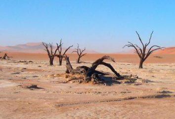 Désert: problèmes environnementaux, vie au désert