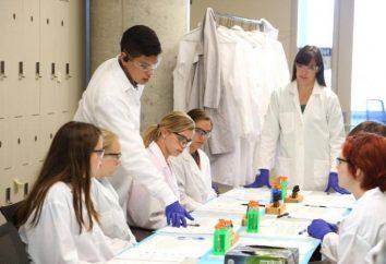 Investigación: Diseño ejemplo para los alumnos y estudiantes