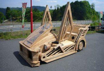 Jak zrobić samochód z drzewa z rękami?