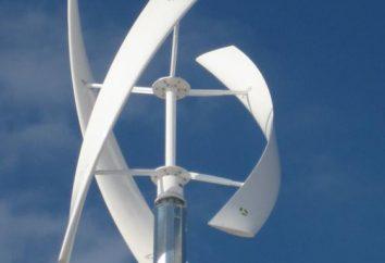 Vertikale Windmühle mit den Händen (5 kW)