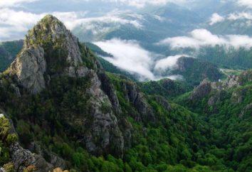 Montanhas dos Cárpatos – country rock