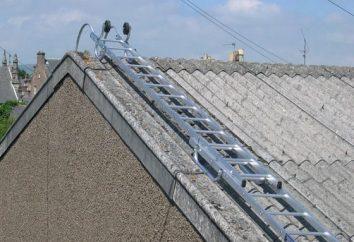 Escada telhado: uma visão geral, tipos, construção e características da tecnologia