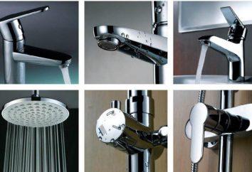 Équipement sanitaire: la beauté et la fonctionnalité