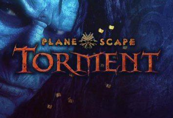 Top RPG isometrico: una panoramica, caratteristiche e recensioni