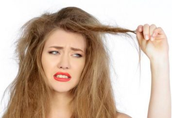 Wirksame Heilmittel für trockenes Haar: eine Überprüfung der besten Rezepte und Bewertungen