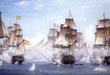 cannoni navali moderni