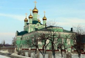 Bischof Paisius (Jurkov): Schigrovskogo Diözese