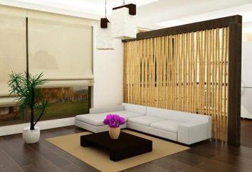 cloisons décoratives dans les chambres intérieures