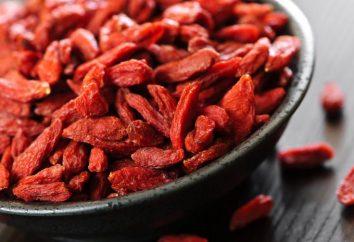 Was ist Lycium Barbarum? Wo kaufen und wie man Lycium Barbarum (goji Beeren oder dereza vulgaris) wächst?