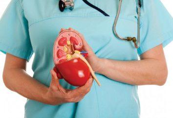 Pielonefrite e insuficiência renal crônica, tratamento, prevenção