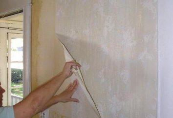 Cómo eliminar de las paredes de papel de vinilo es fácil y rápido: métodos y recomendaciones eficientes