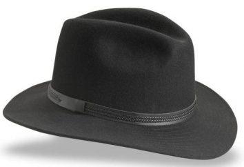 De ala ancha sombrero – un elegante, de moda, original,