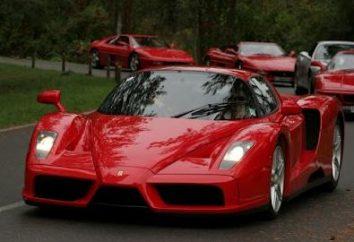 Unzugänglicher und wünschenswert Ferrari Enzo