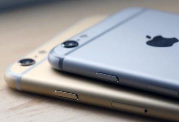 """¿Cuál es el """"iPhone 6""""? Cuando el iPhone 6 salga: opiniones, opinión, el precio, Fotos"""
