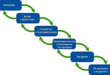 Cykl życia oprogramowania: koncepcja, standardy, procedury,
