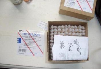 """""""Promedol"""": istruzioni per l'uso. sotto forma di rilascio del farmaco, le regole della vendita nelle farmacie"""