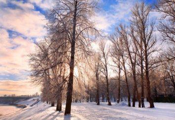 Ano Novo na Bielorrússia? E por que não?
