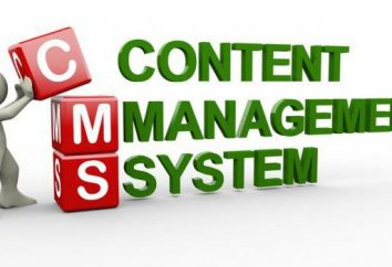 Większość systemów zarządzania treścią. Ocena CMS