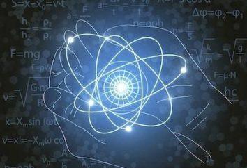 Nauka fundamentalna Informatyki i Technologii Informacyjnych (specjalność): komu pracować?