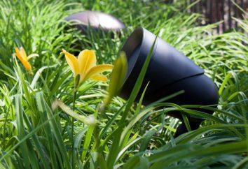 Outdoor-Lautsprecher: Typen, Eigenschaften. Wetterfest Outdoor-Lautsprecher