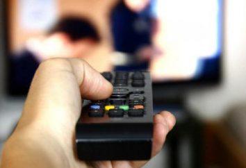 Quali tipi di società televisive esistono?