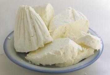 Cómo hacer queso? Receta para hacer queso en casa