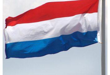 Bandera de los Países Bajos: historia y modernidad