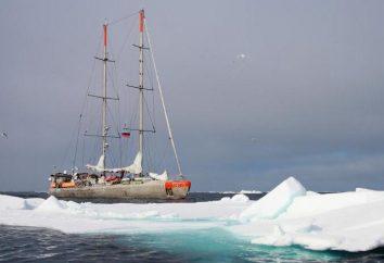 Spedizione yacht: descrizione, dimensioni, specifiche