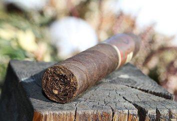 Jak palić cygaro, aby nie wpaść w niezręcznej sytuacji
