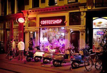 Miglior negozio di caffè ad Amsterdam: guida per i principianti, opinioni e recensioni