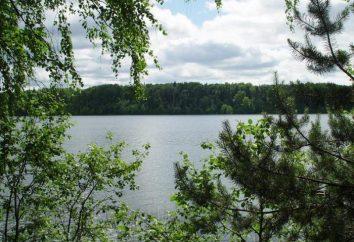 Pochodzenie nazwy jeziora Valdai. Jezioro Valday: opis i zdjęcie