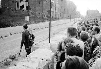 La caída del muro de Berlín. Año en que el Muro de Berlín cayó