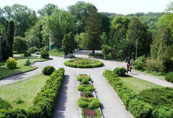 Jardim botânico de SFedU: como chegar, opiniões
