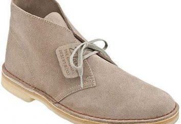Desert – chaussures qui sont devenus des classiques. Description, caractéristiques, modèles pour les hommes et les femmes