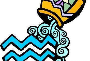 Mascotte per i segni dello zodiaco: Acquario cui la pietra è adatto?