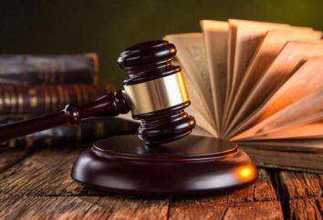 Objeto y sujeto de la teoría del estado y la ley: el concepto y la relación con los demás