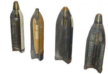 Qu'est-ce qu'une bombe? Mina, une mine terrestre. mines terrestres – une coquille