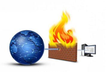 Firewall: O que é e para que serve?