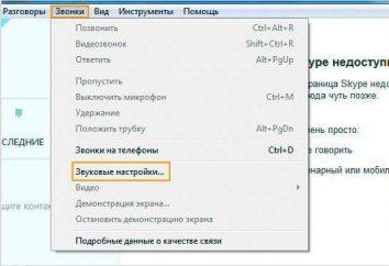 """Jak w """"Skype"""", aby przetestować mikrofon: porady i wskazówki"""